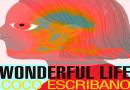 Wonderful life de Coco Escribano en la Fundación Antonio Pérez.