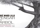 Pensar un árbol de José María Lillo en el Centro de Arte Contemporáneo FAP de Cuenca