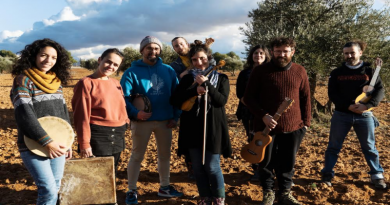 Concierto de COLLADO PROJECT en el Jardín de los Poetas de Cuenca